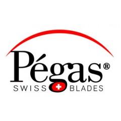 Brzeszczoty włosowe PEGAS